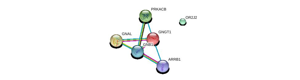 http://string-db.org/version_10/api/image/networkList?limit=0&targetmode=proteins&caller_identity=gene_cards&network_flavor=evidence&identifiers=9606.ENSP00000366372%0d%0a9606.ENSP00000334051%0d%0a9606.ENSP00000367869%0d%0a9606.ENSP00000248572%0d%0a9606.ENSP00000359719%0d%0a9606.ENSP00000409581%0d%0a