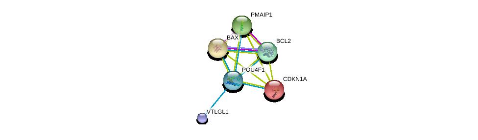 http://string-db.org/version_10/api/image/networkList?limit=0&targetmode=proteins&caller_identity=gene_cards&network_flavor=evidence&identifiers=9606.ENSP00000366413%0d%0a9606.ENSP00000293288%0d%0a9606.ENSP00000469799%0d%0a9606.ENSP00000329623%0d%0a9606.ENSP00000244741%0d%0a9606.ENSP00000326119%0d%0a