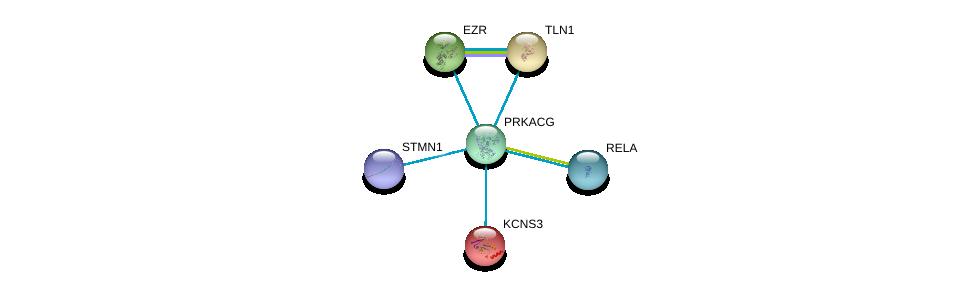 http://string-db.org/version_10/api/image/networkList?limit=0&targetmode=proteins&caller_identity=gene_cards&network_flavor=evidence&identifiers=9606.ENSP00000366488%0d%0a9606.ENSP00000410452%0d%0a9606.ENSP00000316029%0d%0a9606.ENSP00000338934%0d%0a9606.ENSP00000384273%0d%0a9606.ENSP00000305824%0d%0a