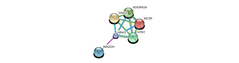 http://string-db.org/version_10/api/image/networkList?limit=0&targetmode=proteins&caller_identity=gene_cards&network_flavor=evidence&identifiers=9606.ENSP00000366506%0d%0a9606.ENSP00000360525%0d%0a9606.ENSP00000333821%0d%0a9606.ENSP00000334448%0d%0a9606.ENSP00000336630%0d%0a9606.ENSP00000337949%0d%0a