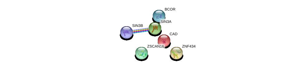 http://string-db.org/version_10/api/image/networkList?limit=0&targetmode=proteins&caller_identity=gene_cards&network_flavor=evidence&identifiers=9606.ENSP00000366527%0d%0a9606.ENSP00000353622%0d%0a9606.ENSP00000369131%0d%0a9606.ENSP00000302502%0d%0a9606.ENSP00000367705%0d%0a9606.ENSP00000264705%0d%0a