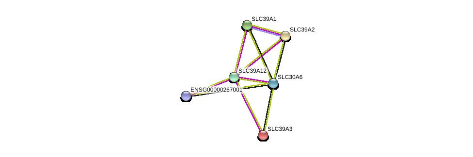 http://string-db.org/version_10/api/image/networkList?limit=0&targetmode=proteins&caller_identity=gene_cards&network_flavor=evidence&identifiers=9606.ENSP00000366586%0d%0a9606.ENSP00000269740%0d%0a9606.ENSP00000298681%0d%0a9606.ENSP00000309710%0d%0a9606.ENSP00000467958%0d%0a9606.ENSP00000368648%0d%0a