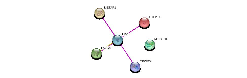 http://string-db.org/version_10/api/image/networkList?limit=0&targetmode=proteins&caller_identity=gene_cards&network_flavor=evidence&identifiers=9606.ENSP00000366612%0d%0a9606.ENSP00000344818%0d%0a9606.ENSP00000283875%0d%0a9606.ENSP00000296411%0d%0a9606.ENSP00000315152%0d%0a9606.ENSP00000302886%0d%0a