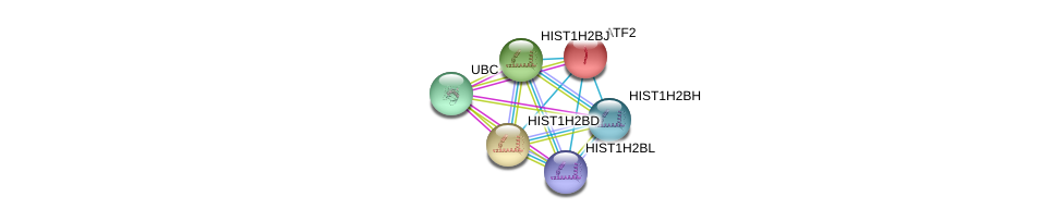 http://string-db.org/version_10/api/image/networkList?limit=0&targetmode=proteins&caller_identity=gene_cards&network_flavor=evidence&identifiers=9606.ENSP00000366618%0d%0a9606.ENSP00000344818%0d%0a9606.ENSP00000264110%0d%0a9606.ENSP00000289316%0d%0a9606.ENSP00000342886%0d%0a9606.ENSP00000348706%0d%0a