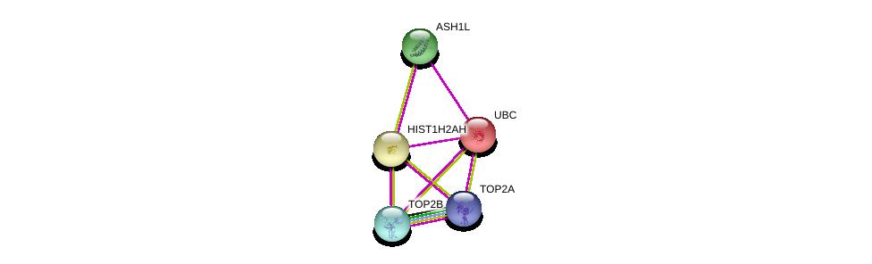 http://string-db.org/version_10/api/image/networkList?limit=0&targetmode=proteins&caller_identity=gene_cards&network_flavor=evidence&identifiers=9606.ENSP00000366679%0d%0a9606.ENSP00000344818%0d%0a9606.ENSP00000411532%0d%0a9606.ENSP00000396704%0d%0a9606.ENSP00000396704%0d%0a9606.ENSP00000376204%0d%0a