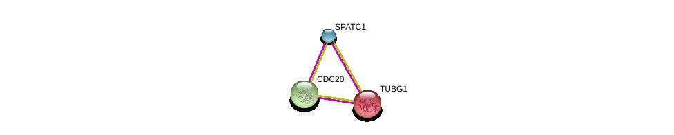 http://string-db.org/version_10/api/image/networkList?limit=0&targetmode=proteins&caller_identity=gene_cards&network_flavor=evidence&identifiers=9606.ENSP00000366690%0d%0a9606.ENSP00000251413%0d%0a9606.ENSP00000308450%0d%0a