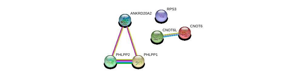 http://string-db.org/version_10/api/image/networkList?limit=0&targetmode=proteins&caller_identity=gene_cards&network_flavor=evidence&identifiers=9606.ENSP00000366826%0d%0a9606.ENSP00000262719%0d%0a9606.ENSP00000348611%0d%0a9606.ENSP00000433821%0d%0a9606.ENSP00000264903%0d%0a9606.ENSP00000261951%0d%0a