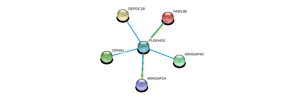 http://string-db.org/version_10/api/image/networkList?limit=0&targetmode=proteins&caller_identity=gene_cards&network_flavor=evidence&identifiers=9606.ENSP00000366977%0d%0a9606.ENSP00000265036%0d%0a9606.ENSP00000362442%0d%0a9606.ENSP00000347710%0d%0a9606.ENSP00000033079%0d%0a9606.ENSP00000378611%0d%0a