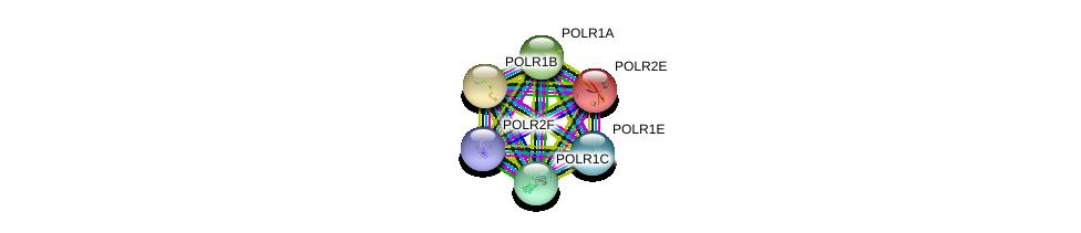 http://string-db.org/version_10/api/image/networkList?limit=0&targetmode=proteins&caller_identity=gene_cards&network_flavor=evidence&identifiers=9606.ENSP00000367029%0d%0a9606.ENSP00000263857%0d%0a9606.ENSP00000263331%0d%0a9606.ENSP00000403852%0d%0a9606.ENSP00000361465%0d%0a9606.ENSP00000215587%0d%0a