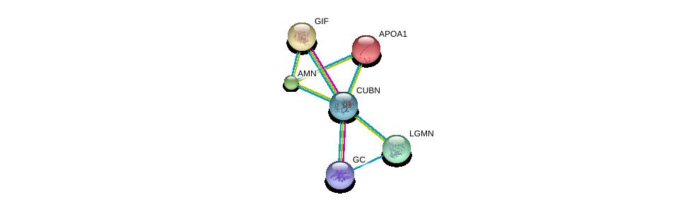 http://string-db.org/version_10/api/image/networkList?limit=0&targetmode=proteins&caller_identity=gene_cards&network_flavor=evidence&identifiers=9606.ENSP00000367064%0d%0a9606.ENSP00000257248%0d%0a9606.ENSP00000299155%0d%0a9606.ENSP00000236850%0d%0a9606.ENSP00000334052%0d%0a9606.ENSP00000421725%0d%0a