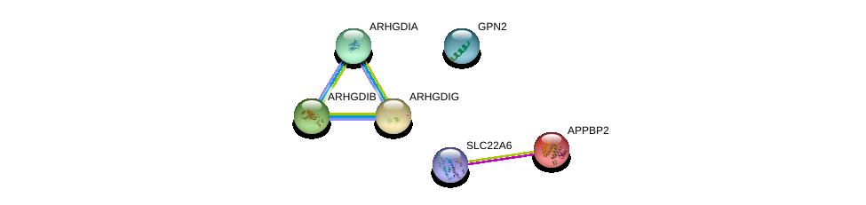 http://string-db.org/version_10/api/image/networkList?limit=0&targetmode=proteins&caller_identity=gene_cards&network_flavor=evidence&identifiers=9606.ENSP00000367102%0d%0a9606.ENSP00000083182%0d%0a9606.ENSP00000269321%0d%0a9606.ENSP00000219409%0d%0a9606.ENSP00000228945%0d%0a9606.ENSP00000363250%0d%0a