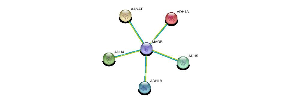 http://string-db.org/version_10/api/image/networkList?limit=0&targetmode=proteins&caller_identity=gene_cards&network_flavor=evidence&identifiers=9606.ENSP00000367309%0d%0a9606.ENSP00000209668%0d%0a9606.ENSP00000250615%0d%0a9606.ENSP00000265512%0d%0a9606.ENSP00000296412%0d%0a9606.ENSP00000306606%0d%0a