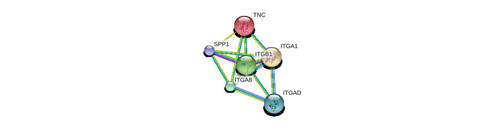 http://string-db.org/version_10/api/image/networkList?limit=0&targetmode=proteins&caller_identity=gene_cards&network_flavor=evidence&identifiers=9606.ENSP00000367316%0d%0a9606.ENSP00000303351%0d%0a9606.ENSP00000373854%0d%0a9606.ENSP00000378517%0d%0a9606.ENSP00000265131%0d%0a9606.ENSP00000282588%0d%0a