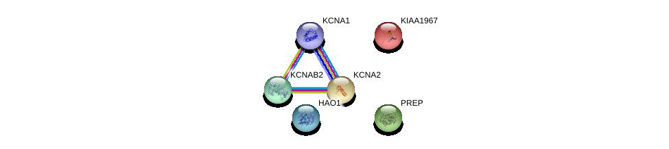 http://string-db.org/version_10/api/image/networkList?limit=0&targetmode=proteins&caller_identity=gene_cards&network_flavor=evidence&identifiers=9606.ENSP00000367323%0d%0a9606.ENSP00000314520%0d%0a9606.ENSP00000371985%0d%0a9606.ENSP00000310670%0d%0a9606.ENSP00000368066%0d%0a9606.ENSP00000358106%0d%0a
