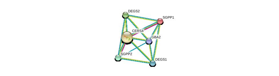 http://string-db.org/version_10/api/image/networkList?limit=0&targetmode=proteins&caller_identity=gene_cards&network_flavor=evidence&identifiers=9606.ENSP00000367343%0d%0a9606.ENSP00000247225%0d%0a9606.ENSP00000251363%0d%0a9606.ENSP00000307126%0d%0a9606.ENSP00000315137%0d%0a9606.ENSP00000316476%0d%0a