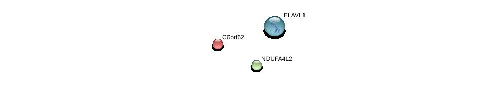 http://string-db.org/version_10/api/image/networkList?limit=0&targetmode=proteins&caller_identity=gene_cards&network_flavor=evidence&identifiers=9606.ENSP00000367359%0d%0a9606.ENSP00000385269%0d%0a9606.ENSP00000377411%0d%0a