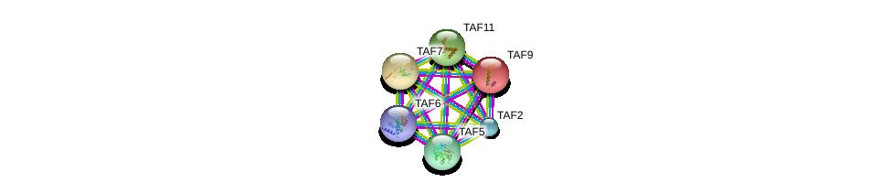 http://string-db.org/version_10/api/image/networkList?limit=0&targetmode=proteins&caller_identity=gene_cards&network_flavor=evidence&identifiers=9606.ENSP00000367406%0d%0a9606.ENSP00000358854%0d%0a9606.ENSP00000354633%0d%0a9606.ENSP00000312709%0d%0a9606.ENSP00000217893%0d%0a9606.ENSP00000399982%0d%0a