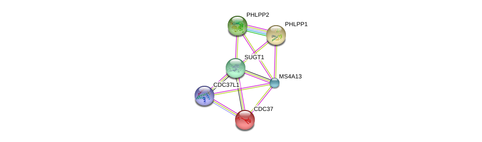 http://string-db.org/version_10/api/image/networkList?limit=0&targetmode=proteins&caller_identity=gene_cards&network_flavor=evidence&identifiers=9606.ENSP00000367428%0d%0a9606.ENSP00000348611%0d%0a9606.ENSP00000262719%0d%0a9606.ENSP00000367208%0d%0a9606.ENSP00000222005%0d%0a9606.ENSP00000371278%0d%0a