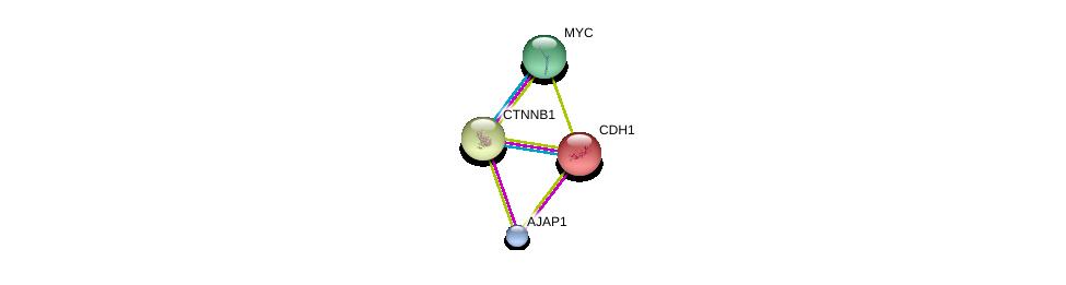 http://string-db.org/version_10/api/image/networkList?limit=0&targetmode=proteins&caller_identity=gene_cards&network_flavor=evidence&identifiers=9606.ENSP00000367432%0d%0a9606.ENSP00000261769%0d%0a9606.ENSP00000344456%0d%0a9606.ENSP00000367207%0d%0a