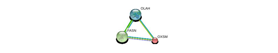 http://string-db.org/version_10/api/image/networkList?limit=0&targetmode=proteins&caller_identity=gene_cards&network_flavor=evidence&identifiers=9606.ENSP00000367462%0d%0a9606.ENSP00000280701%0d%0a9606.ENSP00000304592%0d%0a