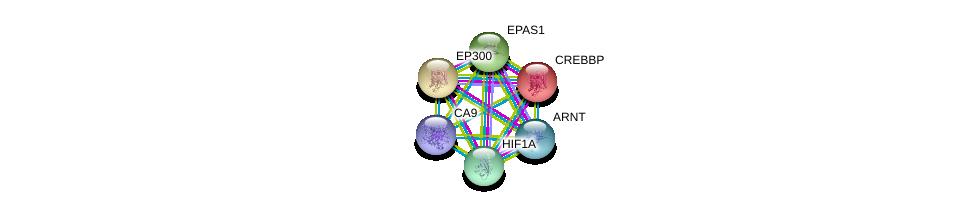http://string-db.org/version_10/api/image/networkList?limit=0&targetmode=proteins&caller_identity=gene_cards&network_flavor=evidence&identifiers=9606.ENSP00000367608%0d%0a9606.ENSP00000262367%0d%0a9606.ENSP00000263253%0d%0a9606.ENSP00000263734%0d%0a9606.ENSP00000338018%0d%0a9606.ENSP00000351407%0d%0a