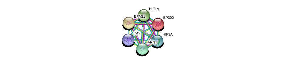 http://string-db.org/version_10/api/image/networkList?limit=0&targetmode=proteins&caller_identity=gene_cards&network_flavor=evidence&identifiers=9606.ENSP00000367608%0d%0a9606.ENSP00000263734%0d%0a9606.ENSP00000338018%0d%0a9606.ENSP00000366898%0d%0a9606.ENSP00000351407%0d%0a9606.ENSP00000263253%0d%0a