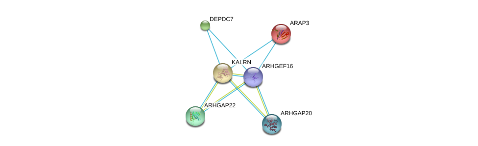 http://string-db.org/version_10/api/image/networkList?limit=0&targetmode=proteins&caller_identity=gene_cards&network_flavor=evidence&identifiers=9606.ENSP00000367629%0d%0a9606.ENSP00000249601%0d%0a9606.ENSP00000241051%0d%0a9606.ENSP00000240874%0d%0a9606.ENSP00000239440%0d%0a9606.ENSP00000260283%0d%0a