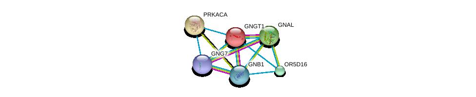http://string-db.org/version_10/api/image/networkList?limit=0&targetmode=proteins&caller_identity=gene_cards&network_flavor=evidence&identifiers=9606.ENSP00000367649%0d%0a9606.ENSP00000334051%0d%0a9606.ENSP00000367869%0d%0a9606.ENSP00000248572%0d%0a9606.ENSP00000309591%0d%0a9606.ENSP00000371594%0d%0a