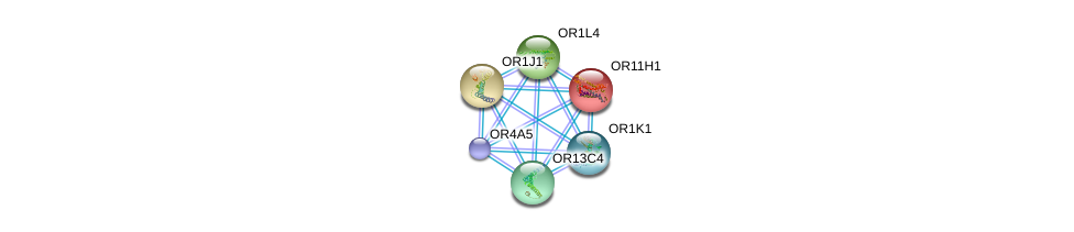 http://string-db.org/version_10/api/image/networkList?limit=0&targetmode=proteins&caller_identity=gene_cards&network_flavor=evidence&identifiers=9606.ENSP00000367664%0d%0a9606.ENSP00000252835%0d%0a9606.ENSP00000259357%0d%0a9606.ENSP00000259466%0d%0a9606.ENSP00000277216%0d%0a9606.ENSP00000277309%0d%0a