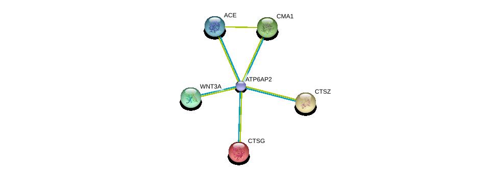 http://string-db.org/version_10/api/image/networkList?limit=0&targetmode=proteins&caller_identity=gene_cards&network_flavor=evidence&identifiers=9606.ENSP00000367697%0d%0a9606.ENSP00000250378%0d%0a9606.ENSP00000284523%0d%0a9606.ENSP00000216336%0d%0a9606.ENSP00000290866%0d%0a9606.ENSP00000217131%0d%0a