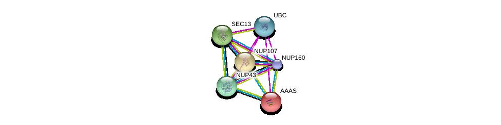http://string-db.org/version_10/api/image/networkList?limit=0&targetmode=proteins&caller_identity=gene_cards&network_flavor=evidence&identifiers=9606.ENSP00000367721%0d%0a9606.ENSP00000229179%0d%0a9606.ENSP00000312122%0d%0a9606.ENSP00000342262%0d%0a9606.ENSP00000344818%0d%0a9606.ENSP00000209873%0d%0a