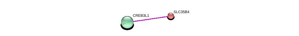 http://string-db.org/version_10/api/image/networkList?limit=0&targetmode=proteins&caller_identity=gene_cards&network_flavor=evidence&identifiers=9606.ENSP00000367770%0d%0a9606.ENSP00000434939%0d%0a