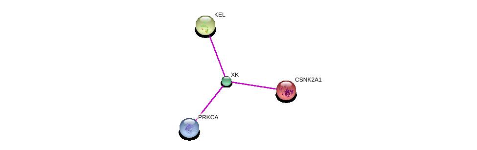 http://string-db.org/version_10/api/image/networkList?limit=0&targetmode=proteins&caller_identity=gene_cards&network_flavor=evidence&identifiers=9606.ENSP00000367879%0d%0a9606.ENSP00000408695%0d%0a9606.ENSP00000347409%0d%0a9606.ENSP00000217244%0d%0a