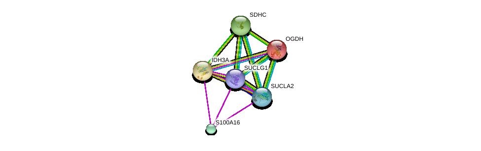 http://string-db.org/version_10/api/image/networkList?limit=0&targetmode=proteins&caller_identity=gene_cards&network_flavor=evidence&identifiers=9606.ENSP00000367923%0d%0a9606.ENSP00000377446%0d%0a9606.ENSP00000299518%0d%0a9606.ENSP00000357692%0d%0a9606.ENSP00000356953%0d%0a9606.ENSP00000222673%0d%0a