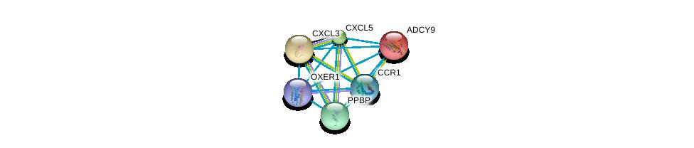 http://string-db.org/version_10/api/image/networkList?limit=0&targetmode=proteins&caller_identity=gene_cards&network_flavor=evidence&identifiers=9606.ENSP00000367930%0d%0a9606.ENSP00000296026%0d%0a9606.ENSP00000296027%0d%0a9606.ENSP00000296028%0d%0a9606.ENSP00000296140%0d%0a9606.ENSP00000294016%0d%0a