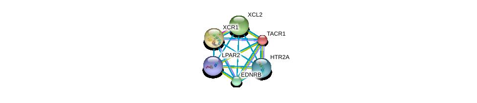 http://string-db.org/version_10/api/image/networkList?limit=0&targetmode=proteins&caller_identity=gene_cards&network_flavor=evidence&identifiers=9606.ENSP00000367959%0d%0a9606.ENSP00000366416%0d%0a9606.ENSP00000384665%0d%0a9606.ENSP00000303522%0d%0a9606.ENSP00000356793%0d%0a9606.ENSP00000310405%0d%0a