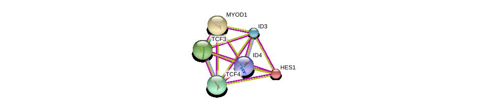 http://string-db.org/version_10/api/image/networkList?limit=0&targetmode=proteins&caller_identity=gene_cards&network_flavor=evidence&identifiers=9606.ENSP00000367972%0d%0a9606.ENSP00000346440%0d%0a9606.ENSP00000250003%0d%0a9606.ENSP00000363689%0d%0a9606.ENSP00000232424%0d%0a9606.ENSP00000262965%0d%0a