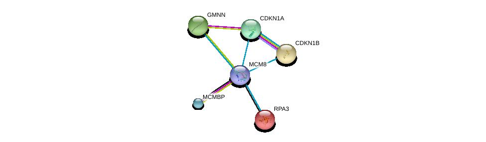 http://string-db.org/version_10/api/image/networkList?limit=0&targetmode=proteins&caller_identity=gene_cards&network_flavor=evidence&identifiers=9606.ENSP00000368174%0d%0a9606.ENSP00000353098%0d%0a9606.ENSP00000223129%0d%0a9606.ENSP00000228872%0d%0a9606.ENSP00000230056%0d%0a9606.ENSP00000244741%0d%0a