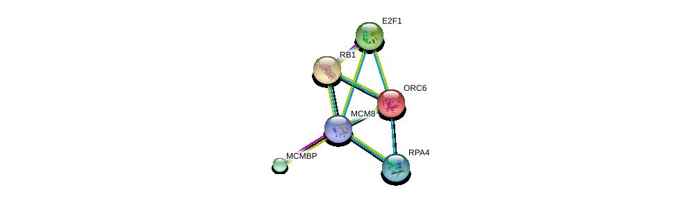 http://string-db.org/version_10/api/image/networkList?limit=0&targetmode=proteins&caller_identity=gene_cards&network_flavor=evidence&identifiers=9606.ENSP00000368174%0d%0a9606.ENSP00000353098%0d%0a9606.ENSP00000345571%0d%0a9606.ENSP00000219097%0d%0a9606.ENSP00000267163%0d%0a9606.ENSP00000362131%0d%0a
