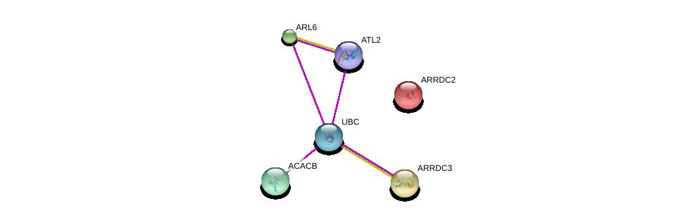 http://string-db.org/version_10/api/image/networkList?limit=0&targetmode=proteins&caller_identity=gene_cards&network_flavor=evidence&identifiers=9606.ENSP00000368237%0d%0a9606.ENSP00000344818%0d%0a9606.ENSP00000337722%0d%0a9606.ENSP00000222250%0d%0a9606.ENSP00000265138%0d%0a9606.ENSP00000341044%0d%0a
