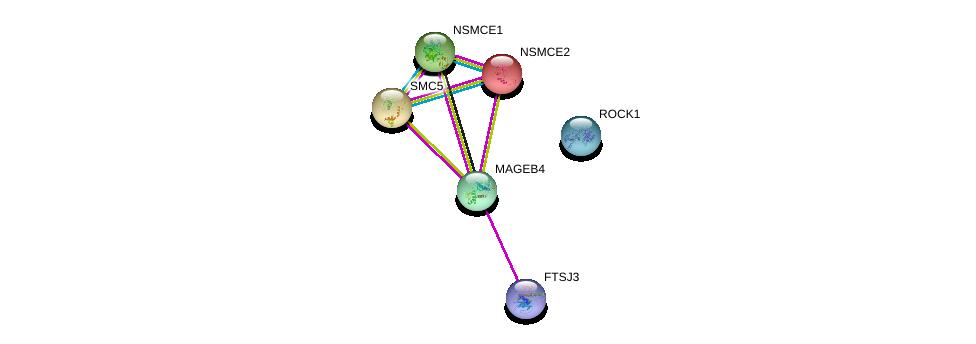http://string-db.org/version_10/api/image/networkList?limit=0&targetmode=proteins&caller_identity=gene_cards&network_flavor=evidence&identifiers=9606.ENSP00000368266%0d%0a9606.ENSP00000396673%0d%0a9606.ENSP00000354957%0d%0a9606.ENSP00000382697%0d%0a9606.ENSP00000355077%0d%0a9606.ENSP00000287437%0d%0a
