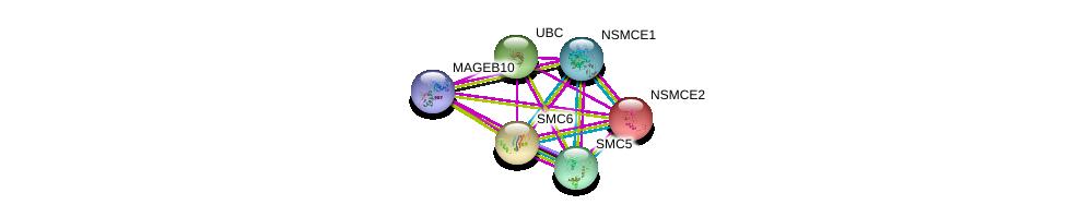 http://string-db.org/version_10/api/image/networkList?limit=0&targetmode=proteins&caller_identity=gene_cards&network_flavor=evidence&identifiers=9606.ENSP00000368304%0d%0a9606.ENSP00000344818%0d%0a9606.ENSP00000323439%0d%0a9606.ENSP00000287437%0d%0a9606.ENSP00000354957%0d%0a9606.ENSP00000355077%0d%0a