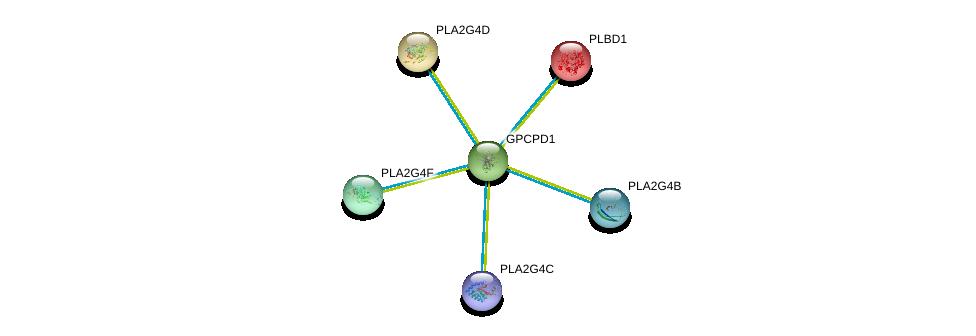 http://string-db.org/version_10/api/image/networkList?limit=0&targetmode=proteins&caller_identity=gene_cards&network_flavor=evidence&identifiers=9606.ENSP00000368305%0d%0a9606.ENSP00000400036%0d%0a9606.ENSP00000371833%0d%0a9606.ENSP00000240617%0d%0a9606.ENSP00000290472%0d%0a9606.ENSP00000396045%0d%0a