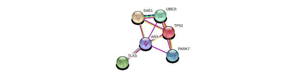http://string-db.org/version_10/api/image/networkList?limit=0&targetmode=proteins&caller_identity=gene_cards&network_flavor=evidence&identifiers=9606.ENSP00000368332%0d%0a9606.ENSP00000270225%0d%0a9606.ENSP00000324897%0d%0a9606.ENSP00000269305%0d%0a9606.ENSP00000340278%0d%0a9606.ENSP00000296921%0d%0a