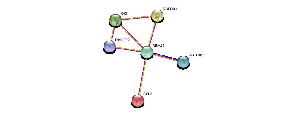http://string-db.org/version_10/api/image/networkList?limit=0&targetmode=proteins&caller_identity=gene_cards&network_flavor=evidence&identifiers=9606.ENSP00000368341%0d%0a9606.ENSP00000309117%0d%0a9606.ENSP00000355094%0d%0a9606.ENSP00000413035%0d%0a9606.ENSP00000393262%0d%0a9606.ENSP00000298159%0d%0a