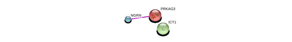 http://string-db.org/version_10/api/image/networkList?limit=0&targetmode=proteins&caller_identity=gene_cards&network_flavor=evidence&identifiers=9606.ENSP00000368389%0d%0a9606.ENSP00000233944%0d%0a9606.ENSP00000301585%0d%0a