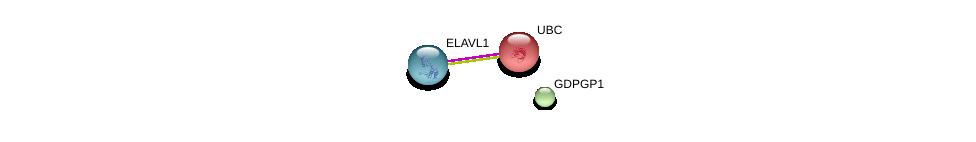 http://string-db.org/version_10/api/image/networkList?limit=0&targetmode=proteins&caller_identity=gene_cards&network_flavor=evidence&identifiers=9606.ENSP00000368405%0d%0a9606.ENSP00000385269%0d%0a9606.ENSP00000344818%0d%0a