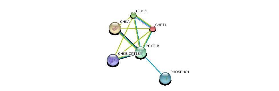 http://string-db.org/version_10/api/image/networkList?limit=0&targetmode=proteins&caller_identity=gene_cards&network_flavor=evidence&identifiers=9606.ENSP00000368439%0d%0a9606.ENSP00000349696%0d%0a9606.ENSP00000265689%0d%0a9606.ENSP00000406909%0d%0a9606.ENSP00000457031%0d%0a9606.ENSP00000229266%0d%0a