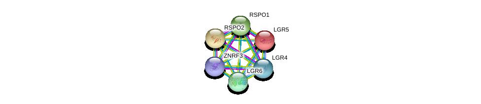 http://string-db.org/version_10/api/image/networkList?limit=0&targetmode=proteins&caller_identity=gene_cards&network_flavor=evidence&identifiers=9606.ENSP00000368516%0d%0a9606.ENSP00000348944%0d%0a9606.ENSP00000356247%0d%0a9606.ENSP00000266674%0d%0a9606.ENSP00000443824%0d%0a9606.ENSP00000276659%0d%0a