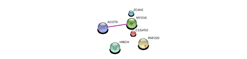 http://string-db.org/version_10/api/image/networkList?limit=0&targetmode=proteins&caller_identity=gene_cards&network_flavor=evidence&identifiers=9606.ENSP00000368605%0d%0a9606.ENSP00000352706%0d%0a9606.ENSP00000267103%0d%0a9606.ENSP00000347548%0d%0a9606.ENSP00000349145%0d%0a9606.ENSP00000363972%0d%0a